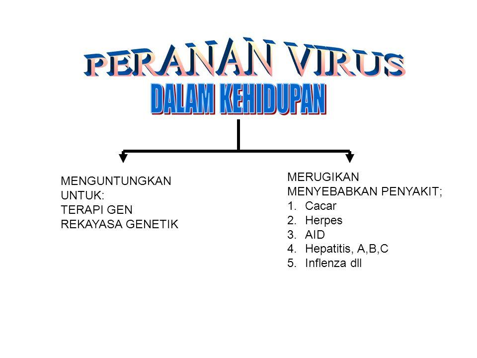 MENGUNTUNGKAN UNTUK: TERAPI GEN REKAYASA GENETIK MERUGIKAN MENYEBABKAN PENYAKIT; 1.Cacar 2.Herpes 3.AID 4.Hepatitis, A,B,C 5.Inflenza dll