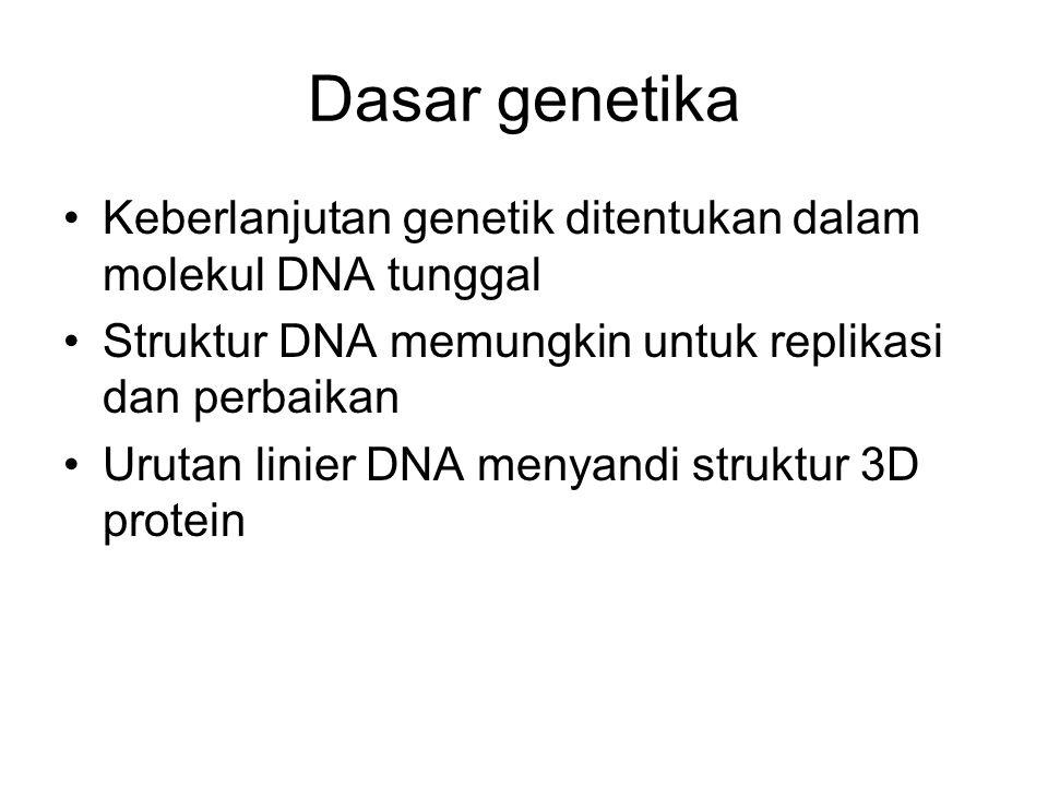 Dasar genetika Keberlanjutan genetik ditentukan dalam molekul DNA tunggal Struktur DNA memungkin untuk replikasi dan perbaikan Urutan linier DNA menya