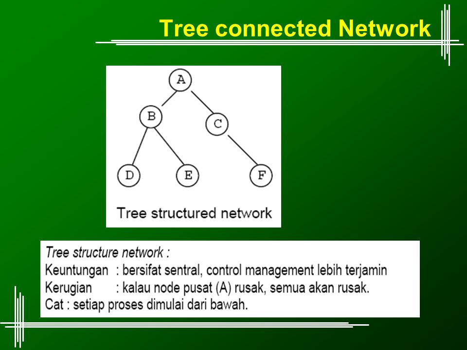 Tree connected Network