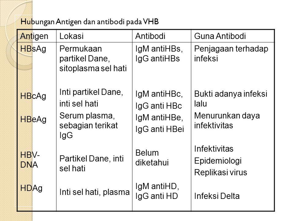 Hubungan Antigen dan antibodi pada VHB AntigenLokasiAntibodiGuna Antibodi HBsAg HBcAg HBeAg HBV- DNA HDAg Permukaan partikel Dane, sitoplasma sel hati Inti partikel Dane, inti sel hati Serum plasma, sebagian terikat IgG Partikel Dane, inti sel hati Inti sel hati, plasma IgM antiHBs, IgG antiHBs IgM antiHBc, IgG anti HBc IgM antiHBe, IgG anti HBei Belum diketahui IgM antiHD, IgG anti HD Penjagaan terhadap infeksi Bukti adanya infeksi lalu Menurunkan daya infektivitas Infektivitas Epidemiologi Replikasi virus Infeksi Delta