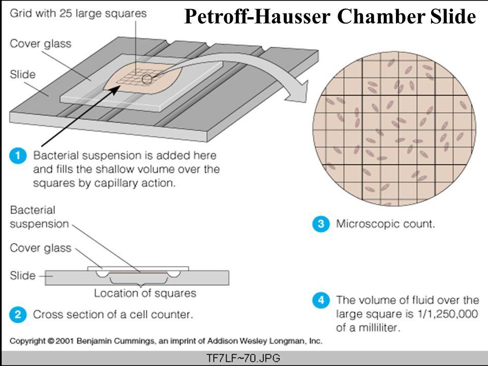 Petroff-Hausser Chamber Slide