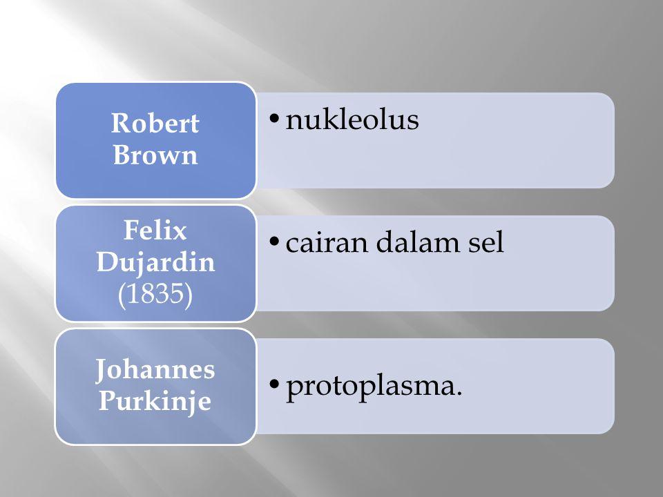 nukleolus Robert Brown cairan dalam sel Felix Dujardin (1835) protoplasma. Johannes Purkinje