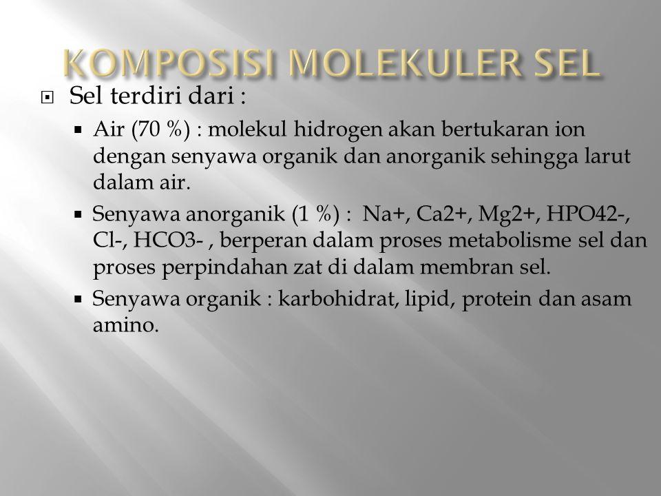  Sel terdiri dari :  Air (70 %) : molekul hidrogen akan bertukaran ion dengan senyawa organik dan anorganik sehingga larut dalam air.