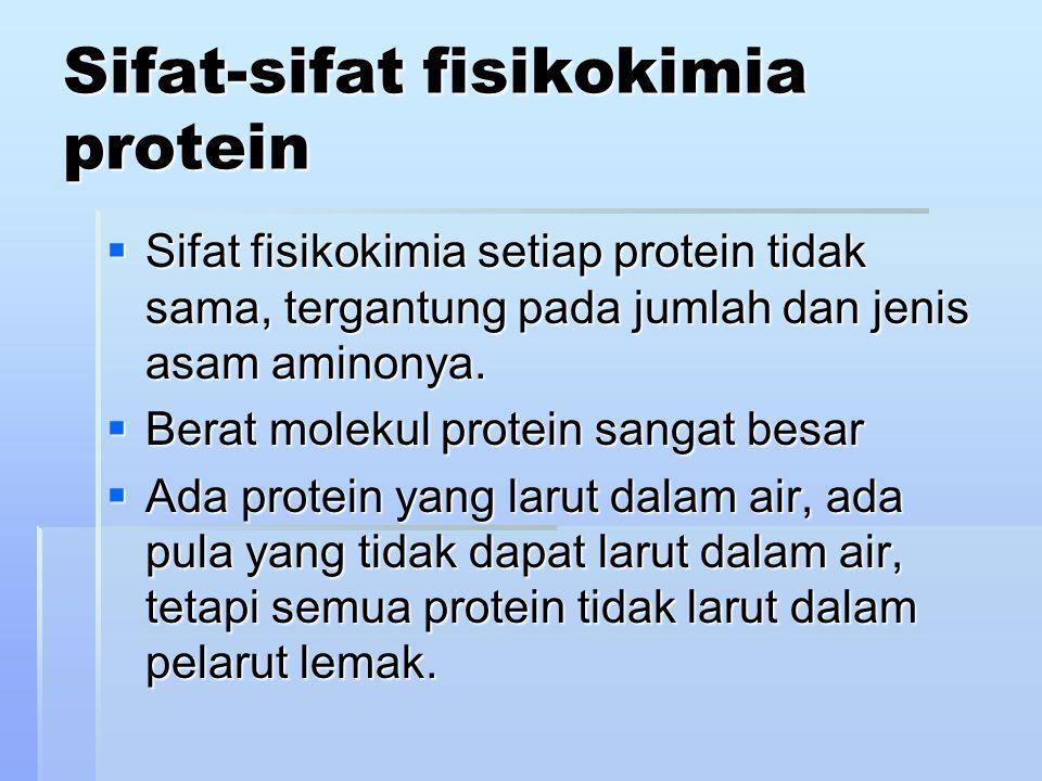 Sifat-sifat fisikokimia protein  Sifat fisikokimia setiap protein tidak sama, tergantung pada jumlah dan jenis asam aminonya.