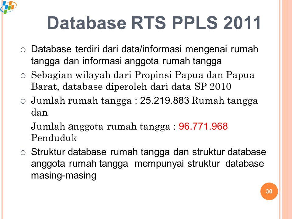 Database terdiri dari data/informasi mengenai rumah tangga dan informasi anggota rumah tangga  Sebagian wilayah dari Propinsi Papua dan Papua Barat, database diperoleh dari data SP 2010  Jumlah rumah tangga : 25.219.883 Rumah tangga dan Jumlah a nggota rumah tangga : 96.771.968 Penduduk  Struktur database rumah tangga dan struktur database anggota rumah tangga mempunyai struktur database masing-masing Database RTS PPLS 2011 30