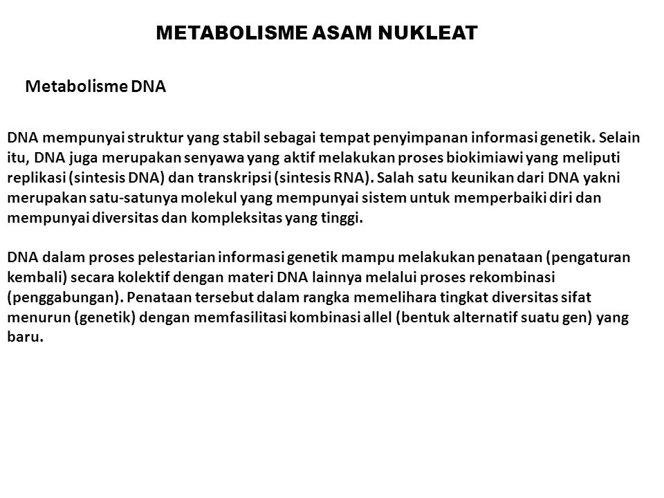 METABOLISME ASAM NUKLEAT DNA mempunyai struktur yang stabil sebagai tempat penyimpanan informasi genetik. Selain itu, DNA juga merupakan senyawa yang