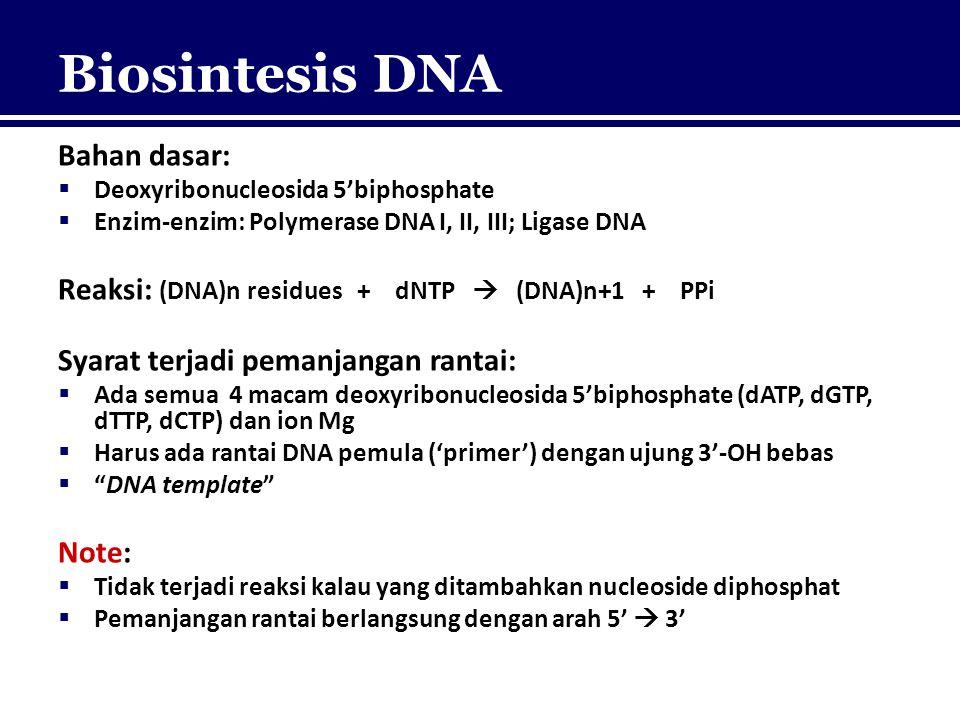 Biosintesis DNA Bahan dasar:  Deoxyribonucleosida 5'biphosphate  Enzim-enzim: Polymerase DNA I, II, III; Ligase DNA Reaksi: (DNA)n residues + dNTP 