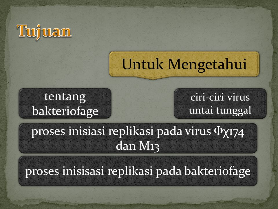 Bakteriofage Virus untai tunggal Inisiasi Replikasi pada virus Фχ174 dan M13 Replikasi bakteriofage a.berasal dari kata bacteria dan phagus.