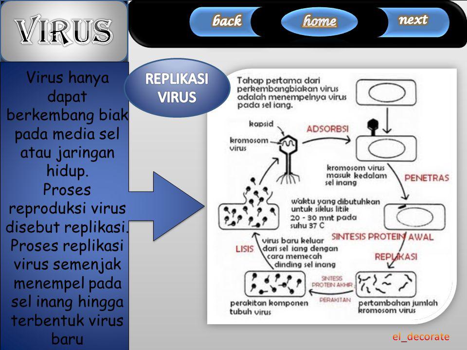 Siklus Litik Bagaimana virus bereproduksi??.