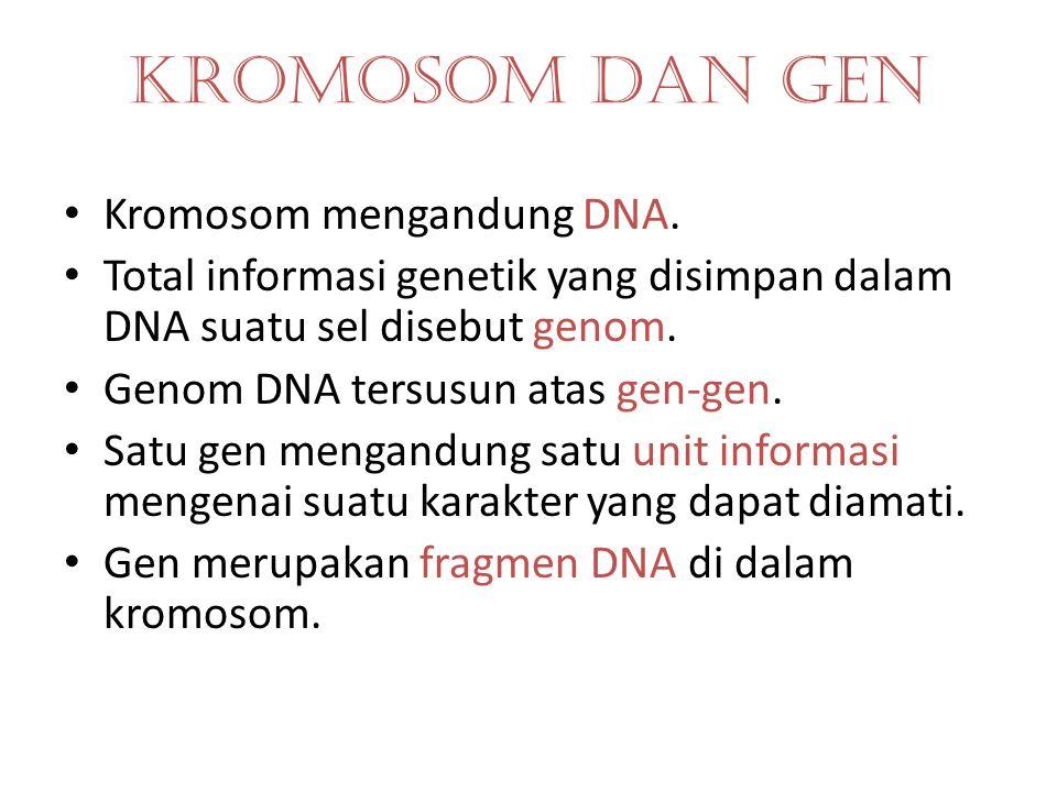 GEN Unit instruksi untuk menghasilkan atau mempengaruhi suatu sifat herediter tertentu. Gen dominan ditulis dengan huruf besar, gen resesif ditulis de