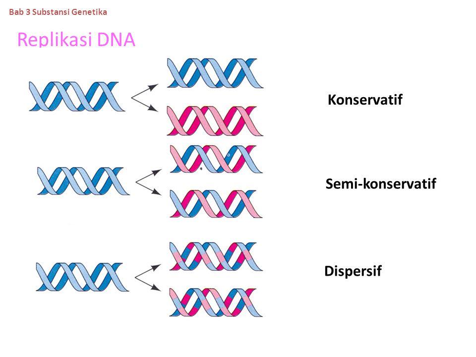 KETENTUAN CHARGAFF Basa nitrogen dalam nukleotida tidak berjumlah sama rata,prosentase berbeda antara satu spesies dengan spesies lainnya. Tetapi juml