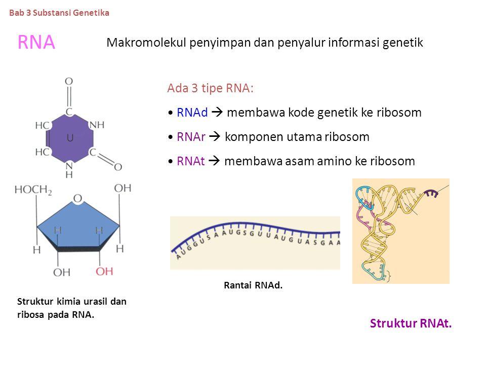 Replikasi DNA Konservatif Semi-konservatif Dispersif Bab 3 Substansi Genetika