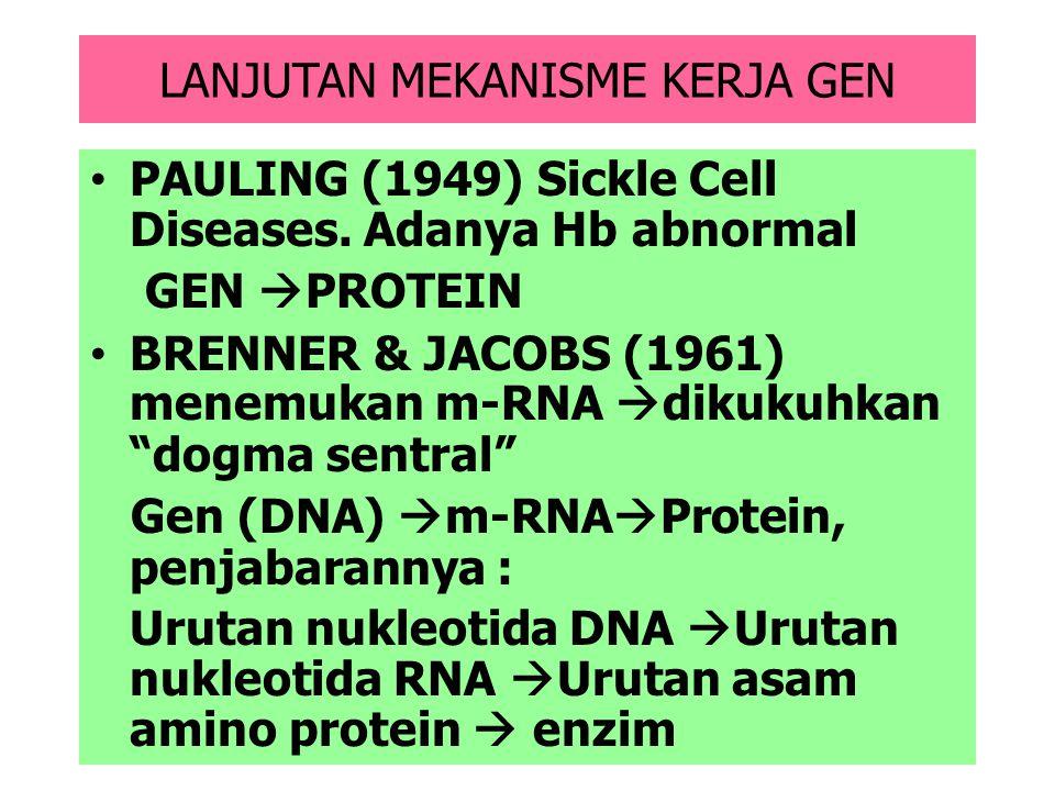 MEKANISME KERJA GEN GARRORD (1909). Alkaptunoria (penyakit metabolik herediter, karena ketiadaan suatu enzim pemecah cincin benzena pada urine  urin