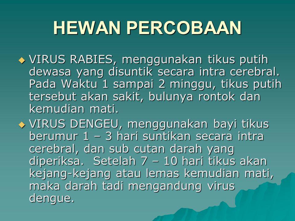  VIRUS RABIES, menggunakan tikus putih dewasa yang disuntik secara intra cerebral.