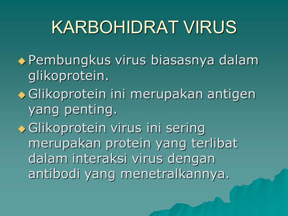 KARBOHIDRAT VIRUS  Pembungkus virus biasasnya dalam glikoprotein.