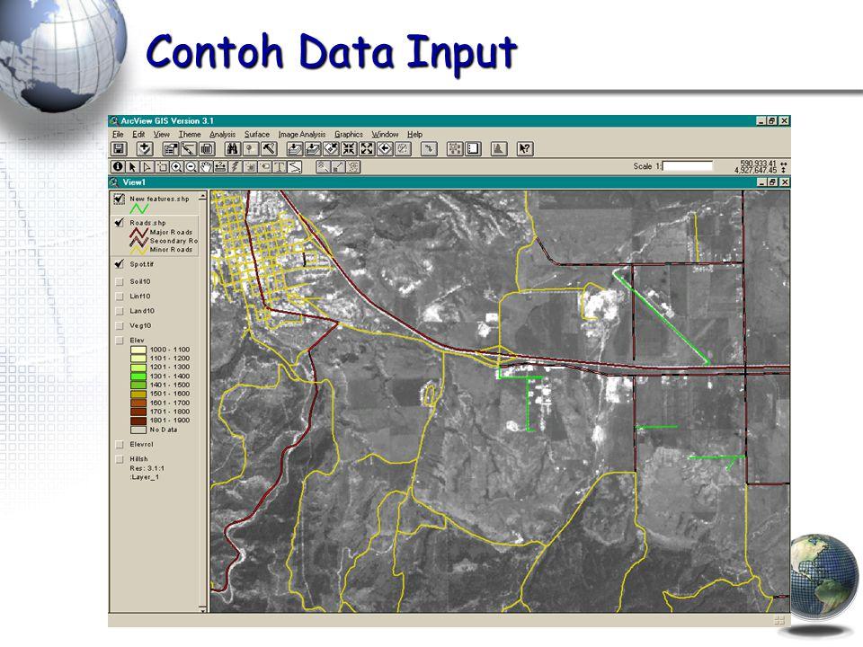 Contoh Data Input