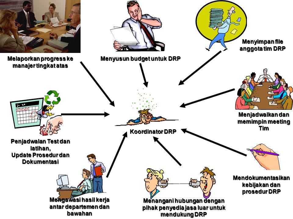 Melaporkan progress ke manajer tingkat atas Menyusun budget untuk DRP Menyimpan file anggota tim DRP Menjadwalkan dan memimpin meeting Tim Mendokument