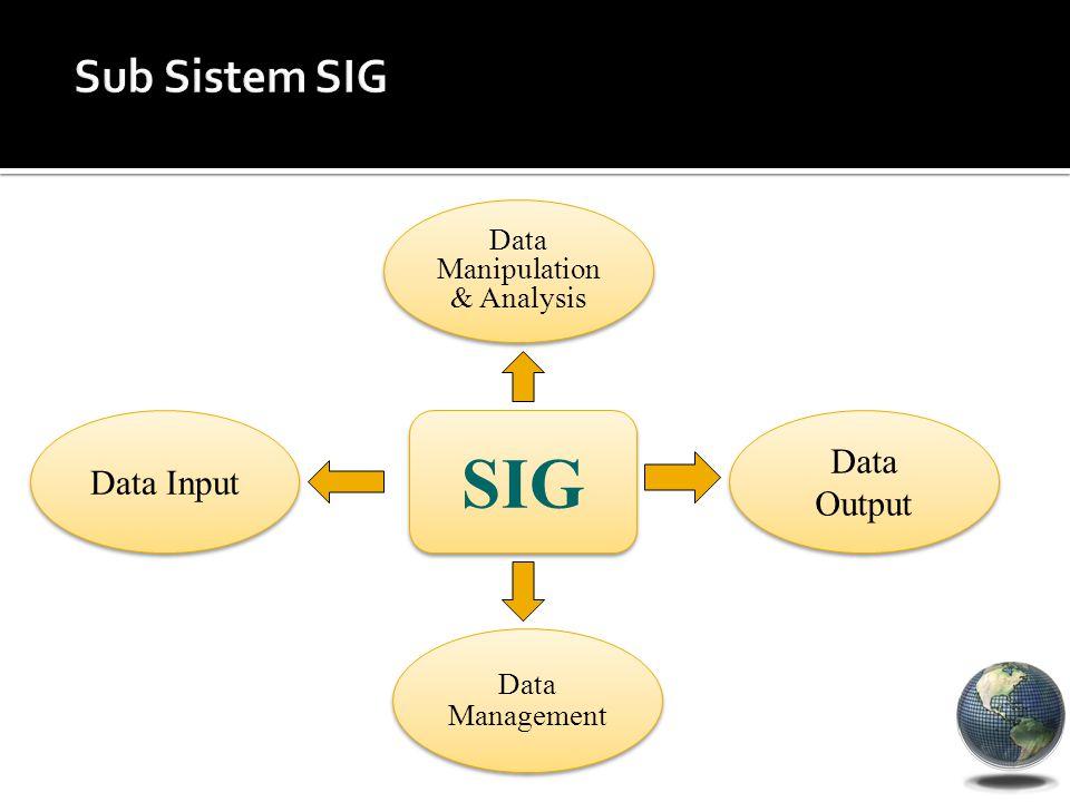 SIG Data Manipulation & Analysis Data Output Data Management Data Input