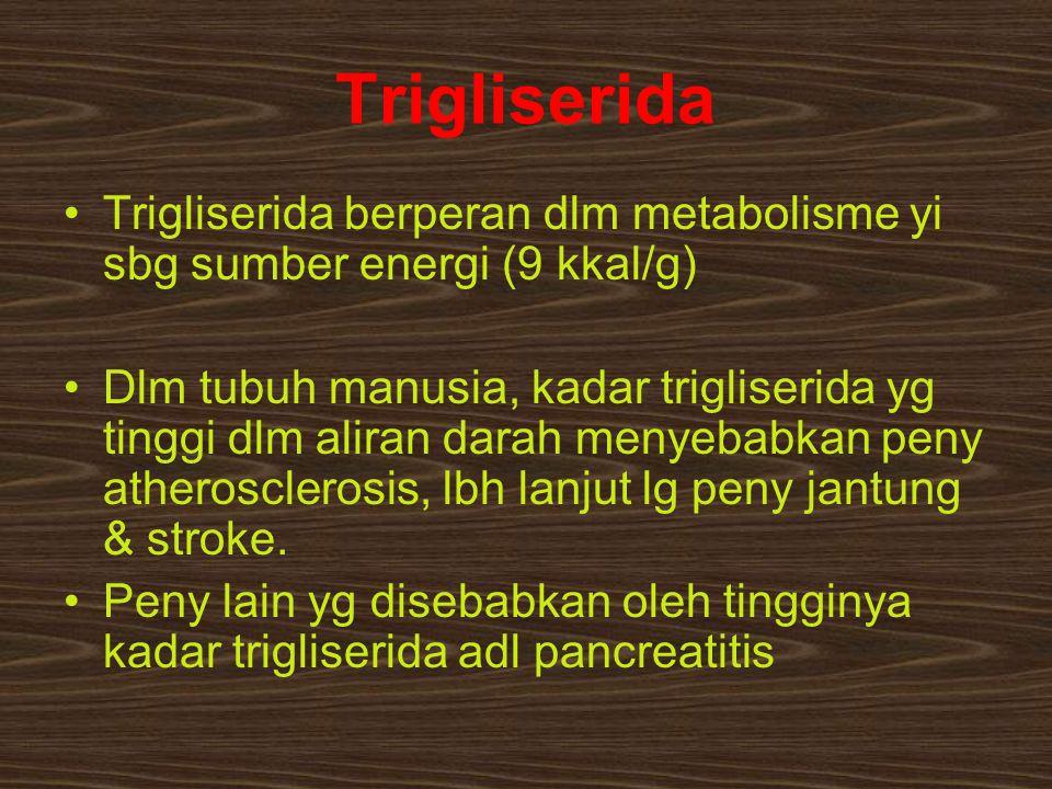 Trigliserida Trigliserida berperan dlm metabolisme yi sbg sumber energi (9 kkal/g) Dlm tubuh manusia, kadar trigliserida yg tinggi dlm aliran darah me
