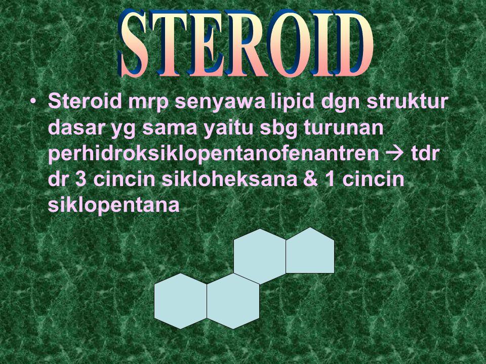 Steroid mrp senyawa lipid dgn struktur dasar yg sama yaitu sbg turunan perhidroksiklopentanofenantren  tdr dr 3 cincin sikloheksana & 1 cincin siklop