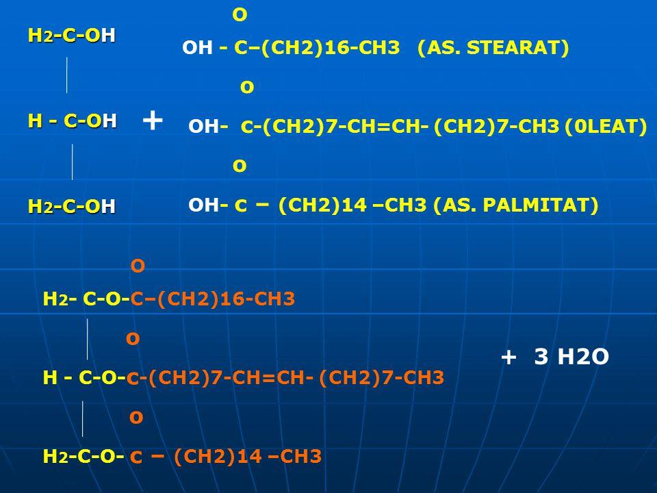 H 2 -C-OH H - C-OH H 2 -C-OH O OH - C–(CH2)16-CH3 (AS. STEARAT) o OH- c -(CH2)7-CH=CH- (CH2)7-CH3 (0LEAT) o OH- c – (CH2)14 –CH3 (AS. PALMITAT) O H 2
