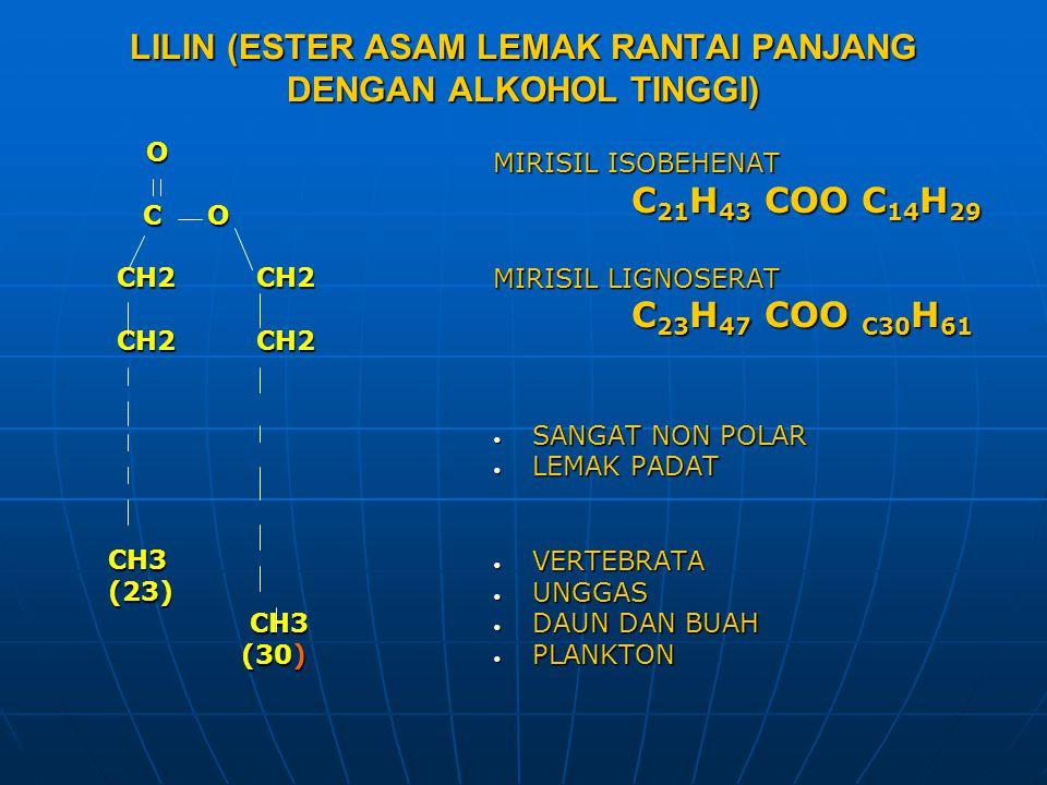 LILIN (ESTER ASAM LEMAK RANTAI PANJANG DENGAN ALKOHOL TINGGI) O C O C O CH2 CH2 CH2 CH2 CH3 CH3 (23) (23) CH3 CH3 (30) (30) MIRISIL ISOBEHENAT C 21 H