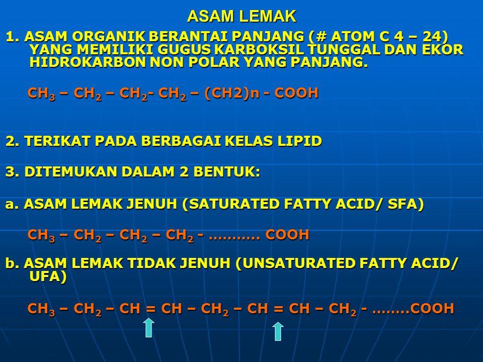 ASAM LEMAK 1. ASAM ORGANIK BERANTAI PANJANG (# ATOM C 4 – 24) YANG MEMILIKI GUGUS KARBOKSIL TUNGGAL DAN EKOR HIDROKARBON NON POLAR YANG PANJANG. CH 3