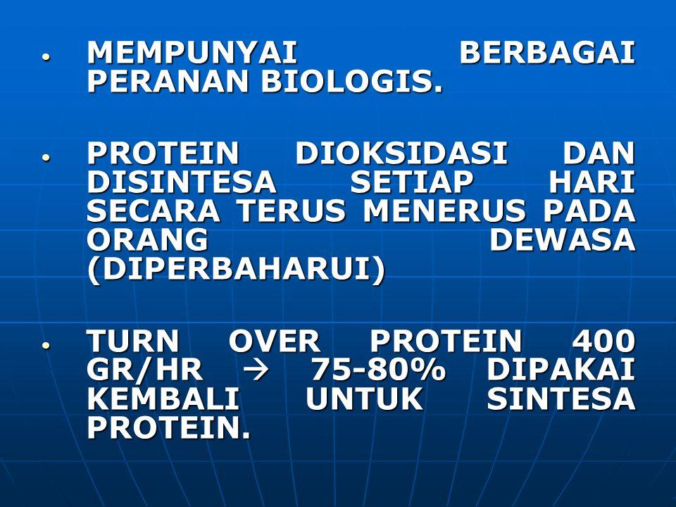 MEMPUNYAI BERBAGAI PERANAN BIOLOGIS. MEMPUNYAI BERBAGAI PERANAN BIOLOGIS. PROTEIN DIOKSIDASI DAN DISINTESA SETIAP HARI SECARA TERUS MENERUS PADA ORANG