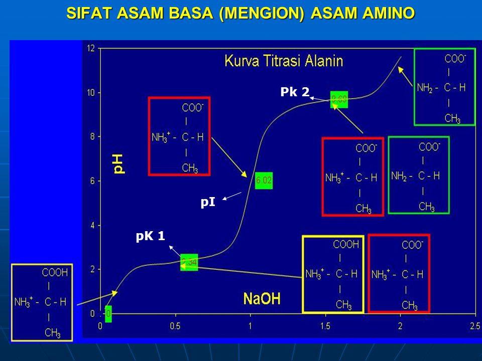 SIFAT ASAM BASA (MENGION) ASAM AMINO pK 1 Pk 2 pI