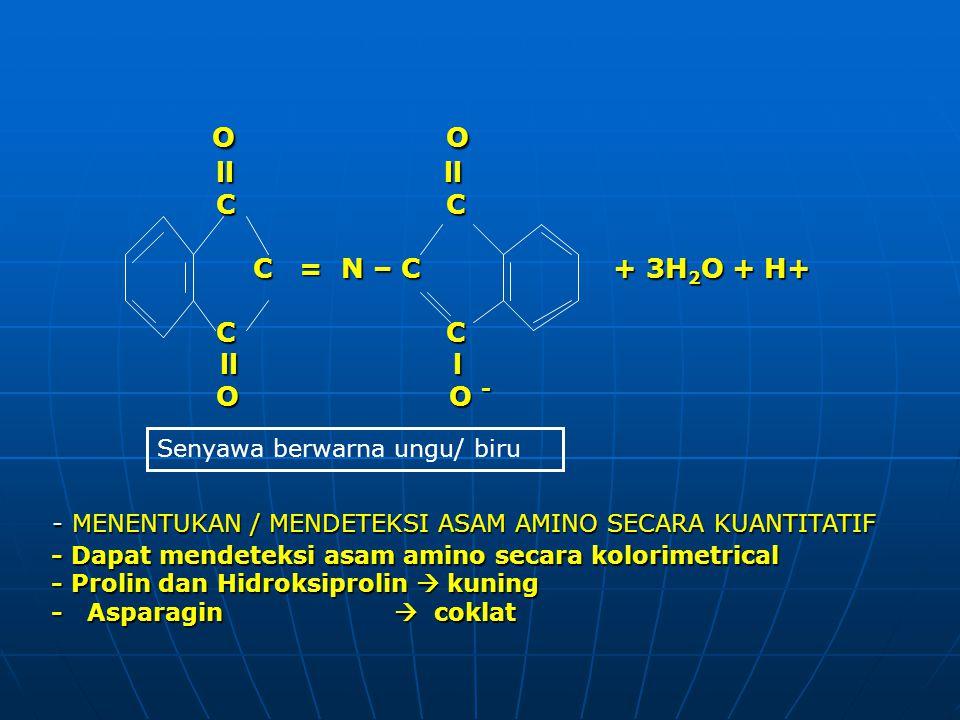 O O O O ll ll ll ll C C C C C = N – C + 3H 2 O + H+ C = N – C + 3H 2 O + H+ C C C C ll l ll l O O - O O - - Dapat mendeteksi asam amino secara kolorim