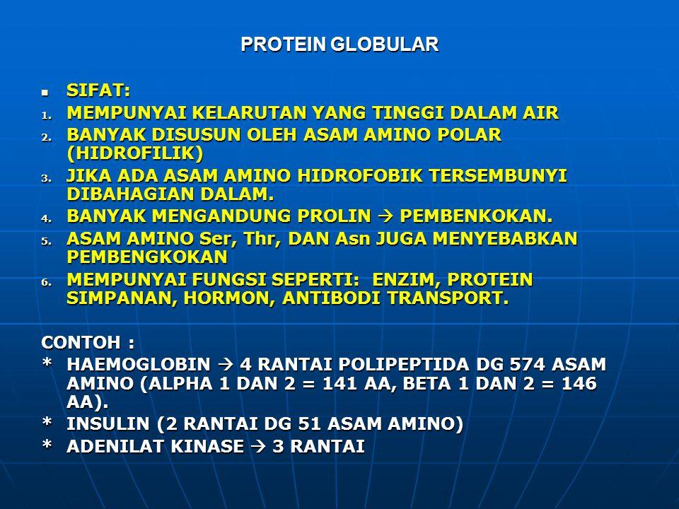 PROTEIN GLOBULAR SIFAT: SIFAT: 1. MEMPUNYAI KELARUTAN YANG TINGGI DALAM AIR 2. BANYAK DISUSUN OLEH ASAM AMINO POLAR (HIDROFILIK) 3. JIKA ADA ASAM AMIN