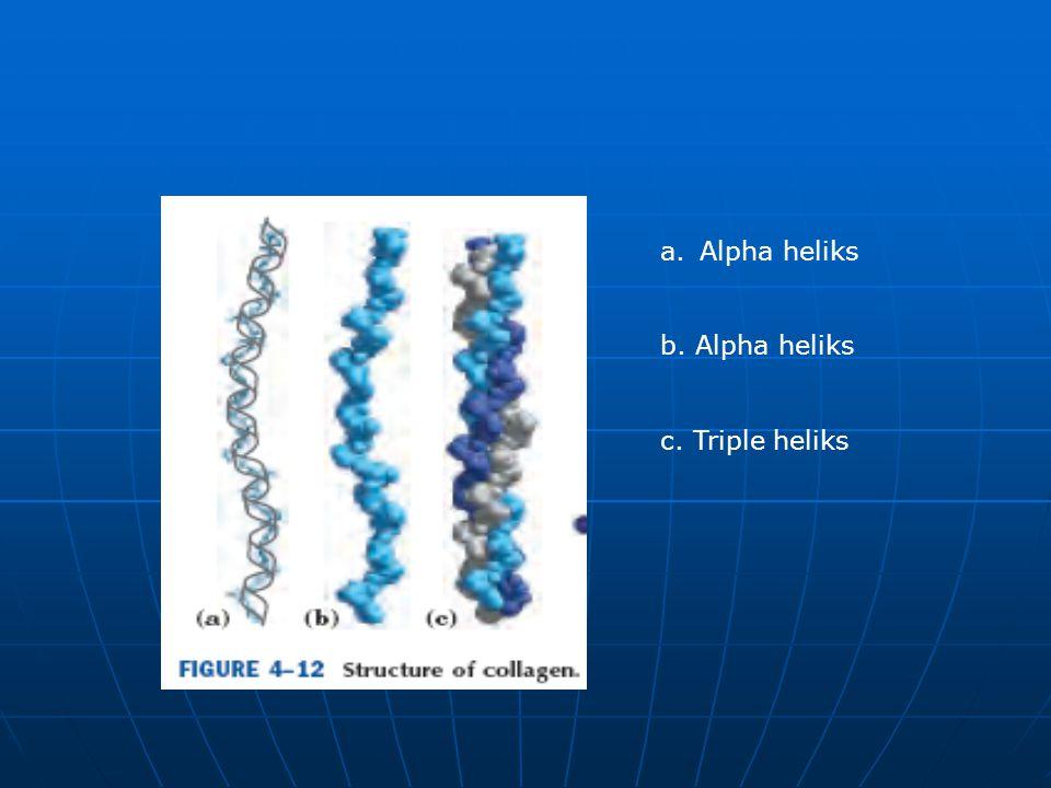 a.Alpha heliks b. Alpha heliks c. Triple heliks