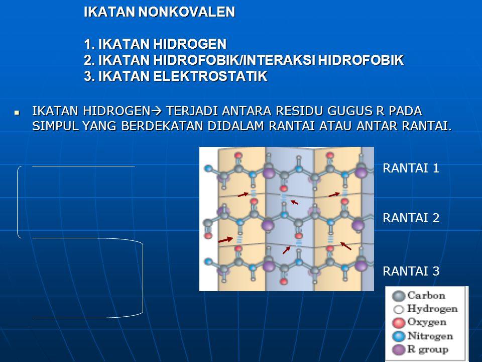 IKATAN NONKOVALEN 1. IKATAN HIDROGEN 2. IKATAN HIDROFOBIK/INTERAKSI HIDROFOBIK 3. IKATAN ELEKTROSTATIK IKATAN HIDROGEN  TERJADI ANTARA RESIDU GUGUS R