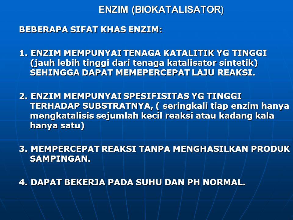 ENZIM (BIOKATALISATOR) BEBERAPA SIFAT KHAS ENZIM: 1. ENZIM MEMPUNYAI TENAGA KATALITIK YG TINGGI (jauh lebih tinggi dari tenaga katalisator sintetik) S