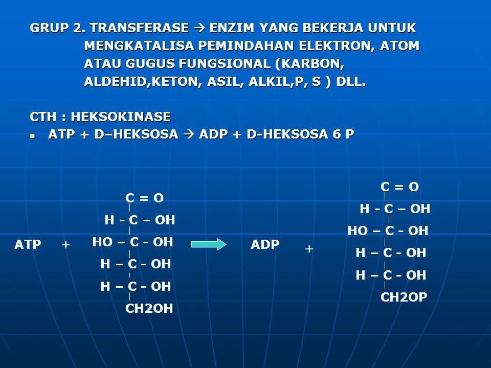 GRUP 2. TRANSFERASE  ENZIM YANG BEKERJA UNTUK MENGKATALISA PEMINDAHAN ELEKTRON, ATOM MENGKATALISA PEMINDAHAN ELEKTRON, ATOM ATAU GUGUS FUNGSIONAL (KA