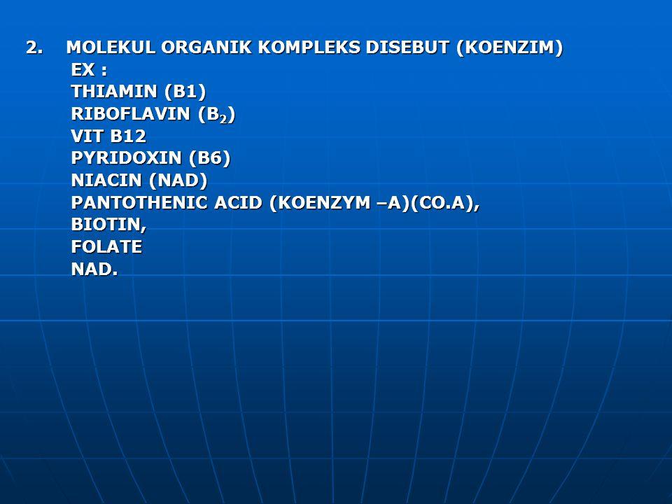 2. MOLEKUL ORGANIK KOMPLEKS DISEBUT (KOENZIM) EX : EX : THIAMIN (B1) THIAMIN (B1) RIBOFLAVIN (B 2 ) RIBOFLAVIN (B 2 ) VIT B12 VIT B12 PYRIDOXIN (B6) P