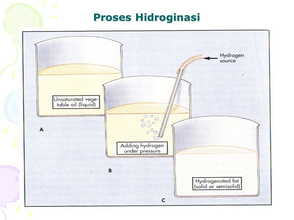 Proses Hidroginasi