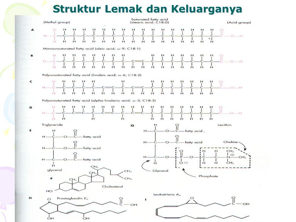 Struktur Lemak dan Keluarganya