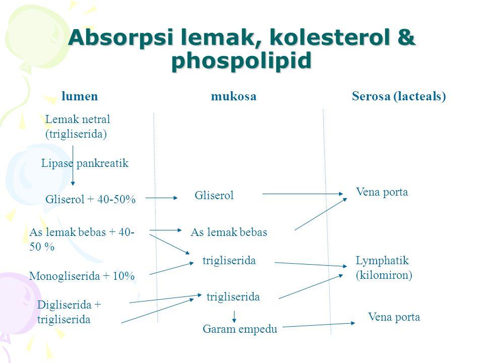 Absorpsi lemak, kolesterol & phospolipid lumenmukosaSerosa (lacteals) Lemak netral (trigliserida) Lipase pankreatik Gliserol + 40-50% As lemak bebas + 40- 50 % Monogliserida + 10% Digliserida + trigliserida Gliserol As lemak bebas trigliserida Garam empedu Vena porta Lymphatik (kilomiron) Vena porta