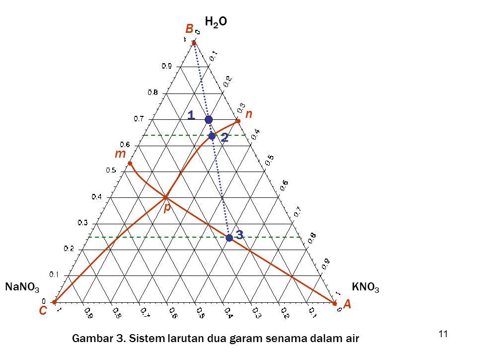 11 B H2OH2O A KNO 3 C NaNO 3 p n m 1 2 3 Gambar 3. Sistem larutan dua garam senama dalam air
