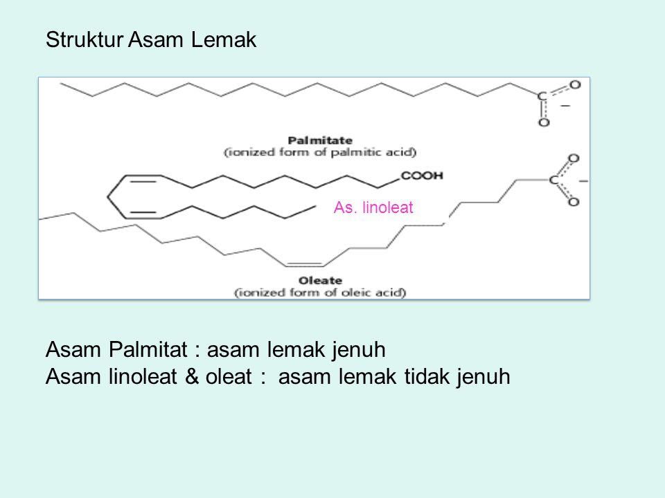 Struktur Asam Lemak As. linoleat Asam Palmitat : asam lemak jenuh Asam linoleat & oleat : asam lemak tidak jenuh