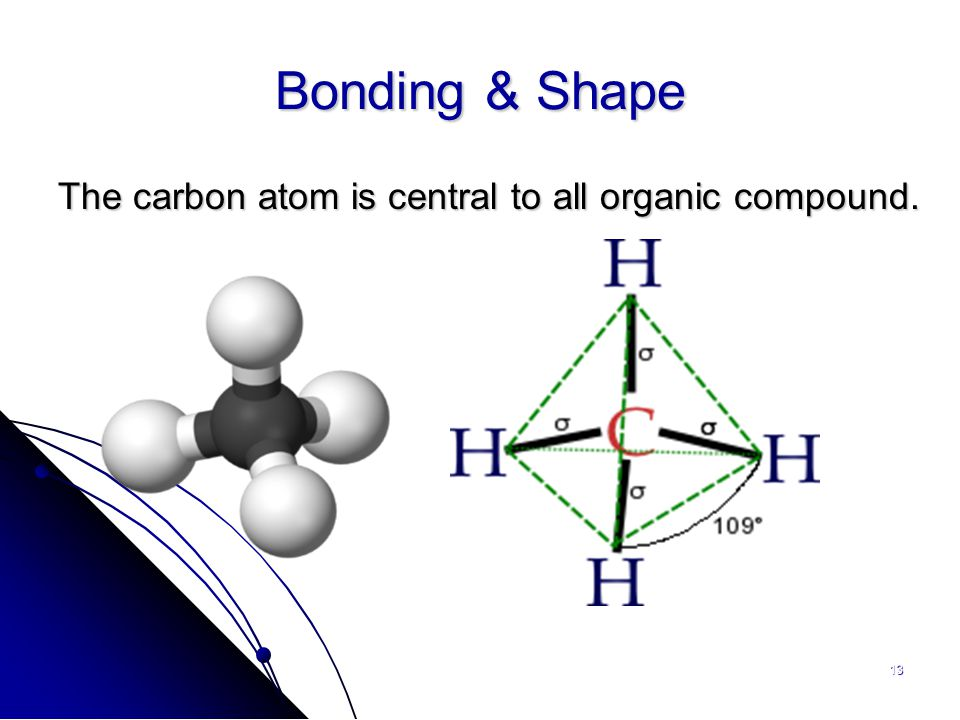 13 Bonding & Shape The carbon atom is central to all organic compound.