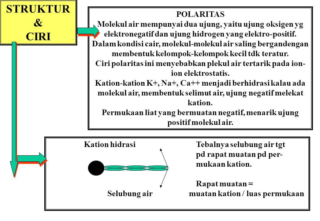 STRUKTUR & CIRI POLARITAS Molekul air mempunyai dua ujung, yaitu ujung oksigen yg elektronegatif dan ujung hidrogen yang elektro-positif.