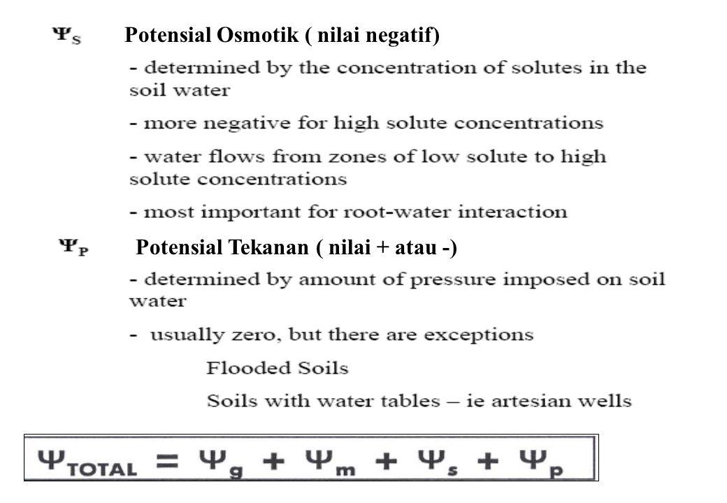 Potensial Tekanan ( nilai + atau -) Potensial Osmotik ( nilai negatif)