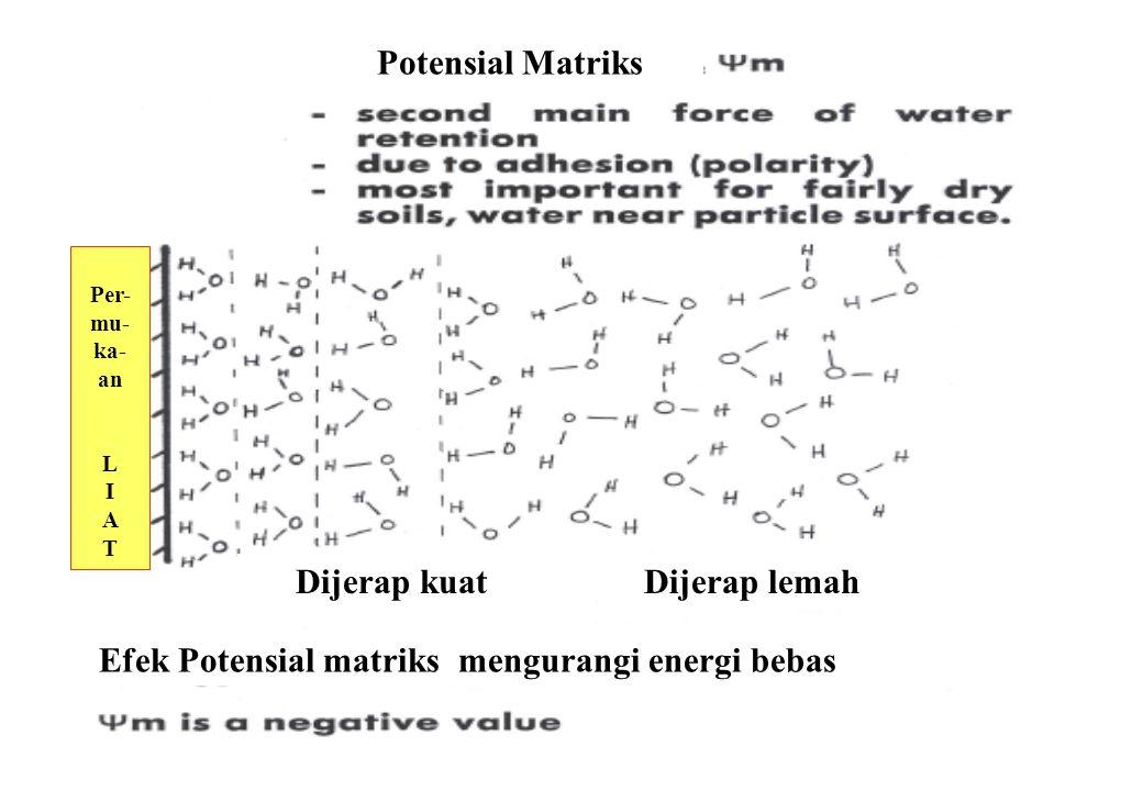 30 Potensial Matriks Efek Potensial matriks mengurangi energi bebas Per- mu- ka- an L I A T Dijerap lemahDijerap kuat