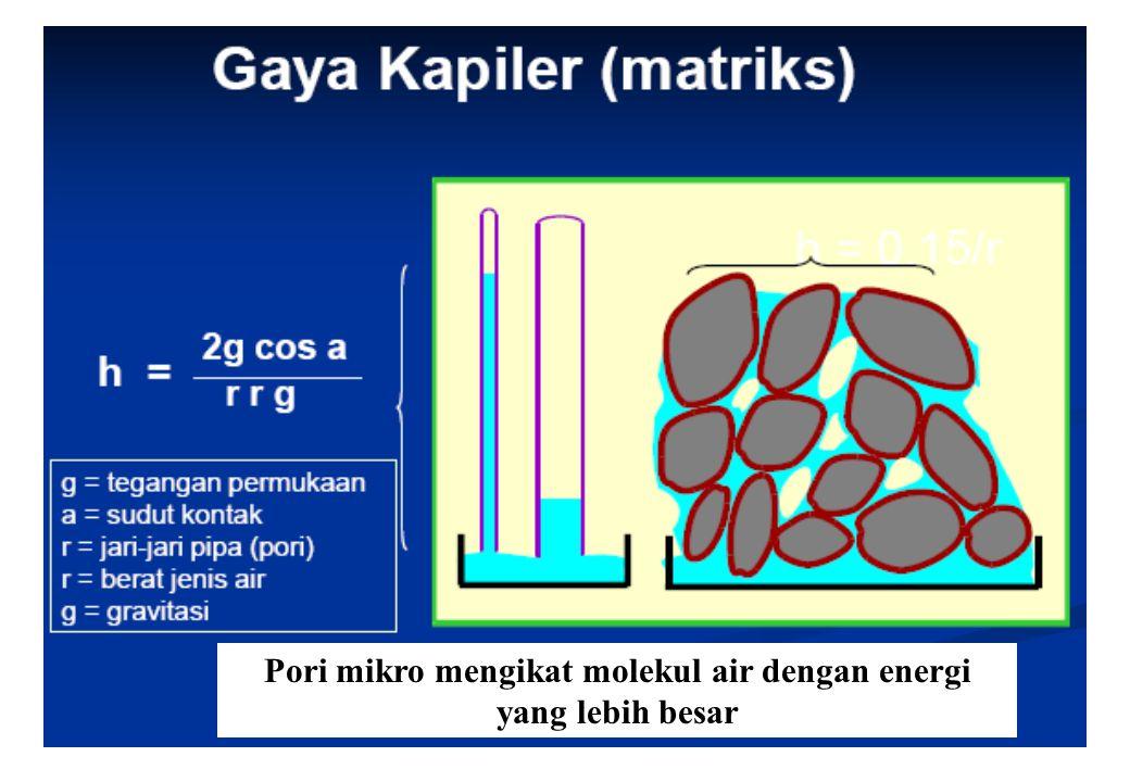 31 Pori mikro mengikat molekul air dengan energi yang lebih besar