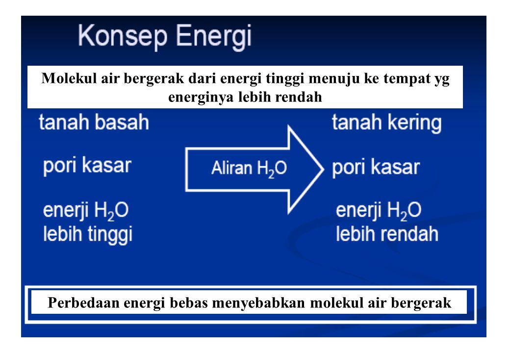 44 Perbedaan energi bebas menyebabkan molekul air bergerak Molekul air bergerak dari energi tinggi menuju ke tempat yg energinya lebih rendah