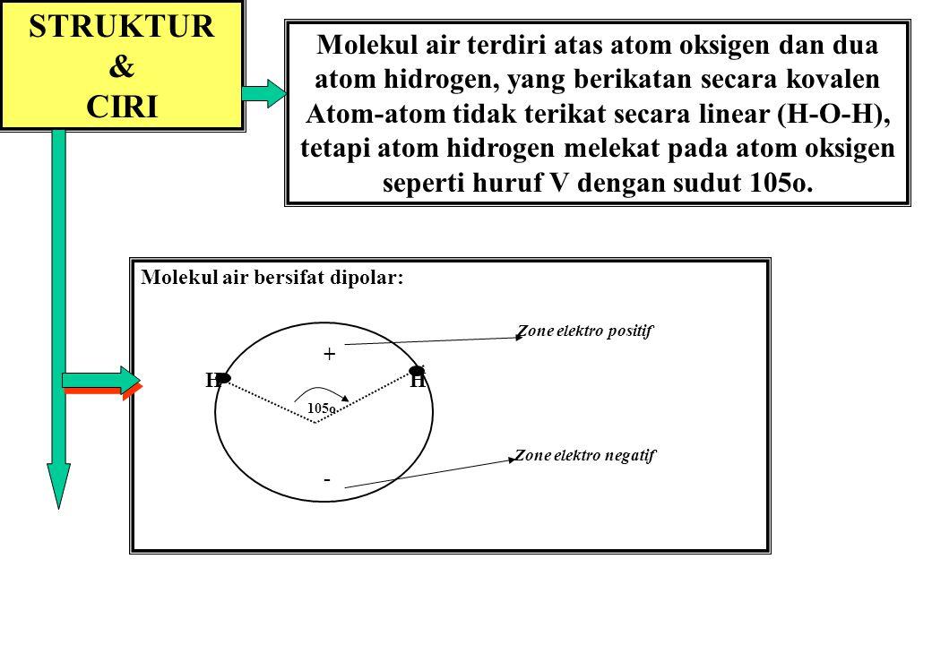 8 Air adalah molekul polar dengan ikatan hidrogen di antara molekul-molekul air