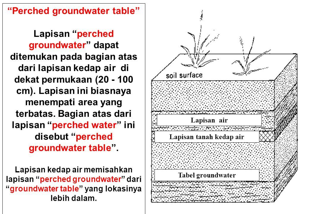 98 Perched groundwater table Lapisan perched groundwater dapat ditemukan pada bagian atas dari lapisan kedap air di dekat permukaan (20 - 100 cm).