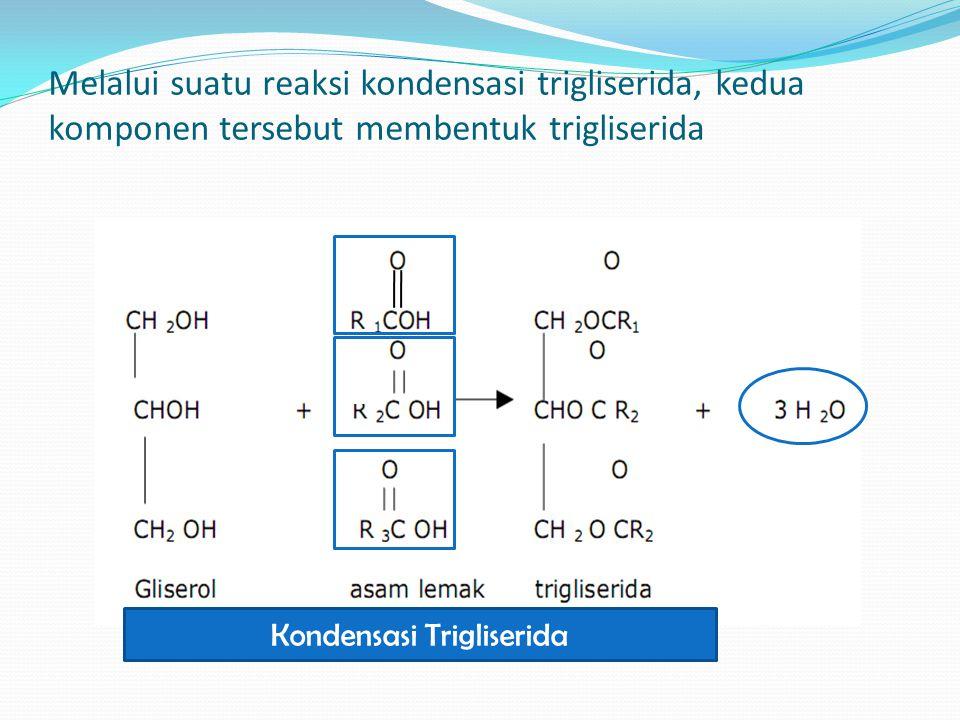 Melalui suatu reaksi kondensasi trigliserida, kedua komponen tersebut membentuk trigliserida Kondensasi Trigliserida